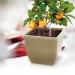 Samozavlažovací kvetináč set 2L béžový - medosa COUBI QUADRA